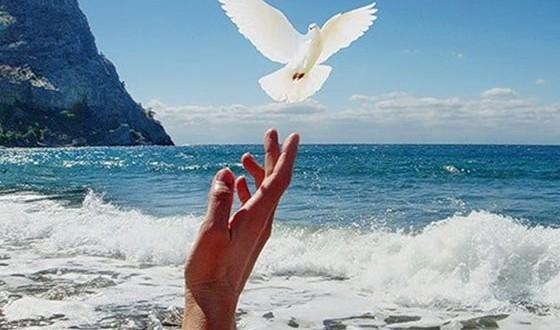 простить и отпустить